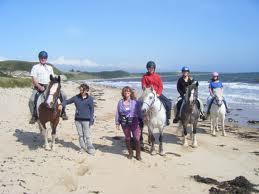 Pony trekking on cefn sidan