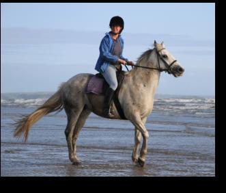 Horse riding on cefn sidan